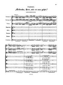 Gedenke, Herr, wie es uns gehet, BWV 217... Volume BWV 217 by Bach, Johann Sebastian