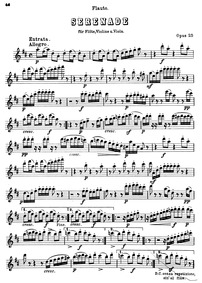 Serenade in D major, Op.25 : Flute Volume Op.25 by Beethoven, Ludwig van