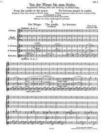 Von der Wiege bis zum Grabe (From the Cr... Volume S.107 ; LW.G38 by Liszt, Franz