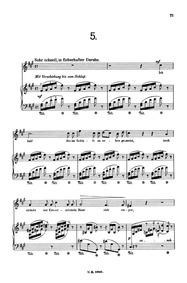 Dolorosa (Dolorosa: Lieder-Cyclus für ei... Volume Op.30 by Jensen, Adolf