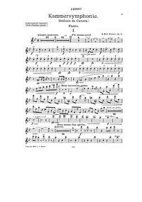 Kammersymphonie, Op.8 : Flute Volume Op.8 by Wolf-Ferrari, Ermanno