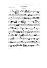 Burleske, Op.64 : Flute 2 Part Volume Op.64 by Rorich, Karl