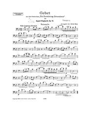 Die Zerstörung Jerusalems, Op.75 (Die Ze... Volume Op.75 by Klughardt, August