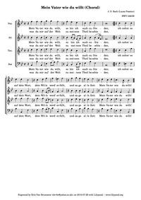 St. Luke Passion (St. Lukas PassionPassi... Volume BWV 246 (Anh.II/30) ; BC.D6 by Bach, Johann Sebastian