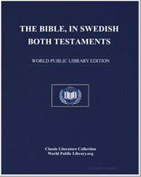 New Testament : The Bible in Swedish by Various