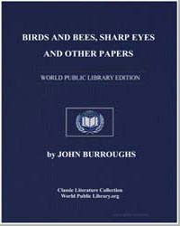 Birds and Bees, Sharp Eyes and Other Pap... by Burroughs, John
