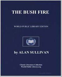 The Bush Fire by Sullivan, Alan
