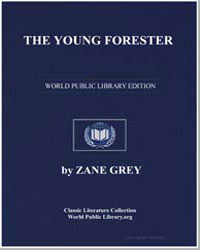 The Young Forester by Grey, Zane