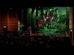 TEDtalks Global Conference 2011 : Annie ... by Annie Murphy Paul