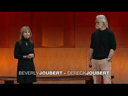 TEDtalks Women : Beverly + Dereck Jouber... by Beverly and Dereck Joubert
