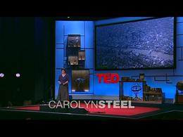 TEDtalks Global Conference 2009 : Caroly... by Carolyn Steel