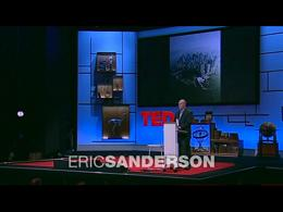 TEDtalks Global Conference 2009 : Eric S... by Eric Sanderson