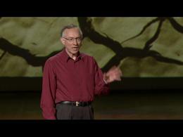 TEDtalks Conference 2011 : Harvey Finebe... by Harvey Fineberg