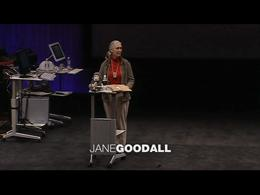 TEDtalks Conference 2002 : Jane Goodall:... by Jane Goodall