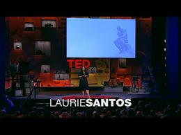 TEDtalks Global Conference 2010 : Laurie... by Laurie Santos