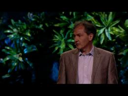TEDtalks Global Conference 2011 : Mark P... by Mark Pagel