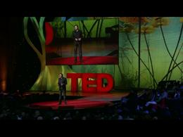 TEDtalks Conference 2011 : Shea Hembrey:... by Shea Hembrey