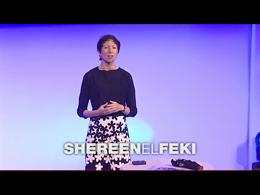 TEDtalks Global Conference 2009 : Sheree... by Shereen El Feki