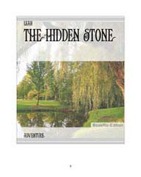 The Hidden Stone by Leah