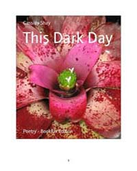 This Dark Day by Shay, Cassidy