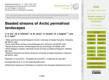Beaded Streams of Arctic Permafrost Land... by Arp, C. D.