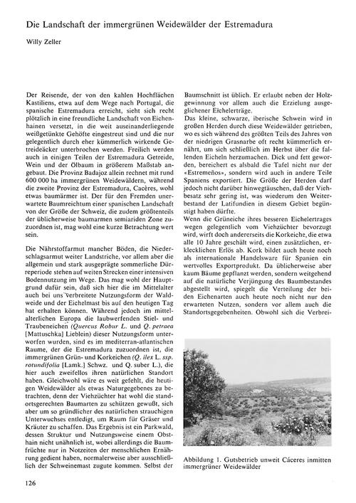 Die Landschaft Der Immergrünen Weidewäld... by Zeller, W.