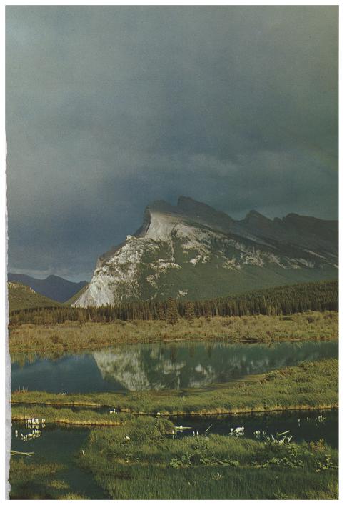 Mount Rundle : Volume 32, Issue 4 (30/11... by Steffen, K.