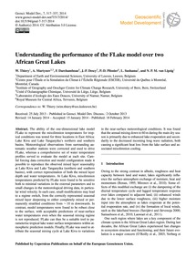 Understanding the Performance of the Fla... by Thiery, W.
