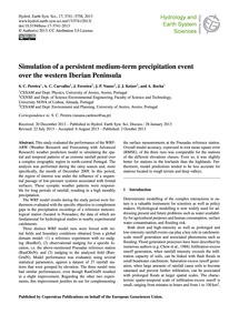 Simulation of a Persistent Medium-term P... by Pereira, S. C.