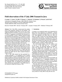 Field Observations of the 17 July 2006 T... by Lavigne, F.
