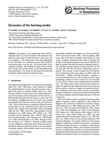 Dynamics of the Burning Model : Volume 1... by Gedalin, M.