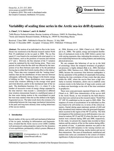 Variability of Scaling Time Series in th... by Chmel, A.