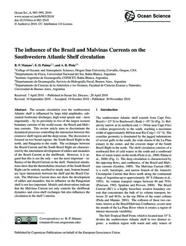 The Influence of the Brazil and Malvinas... by Matano, R. P.
