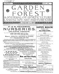 Garden and Forest Volume 2 Issue 48 Janu... by Charles S. Sargent
