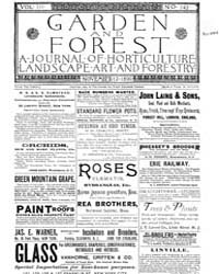 Garden and Forest Volume 3 Issue 142 Nov... by Charles S. Sargent