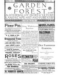Garden and Forest Volume 4 Issue 157 Feb... by Charles S. Sargent