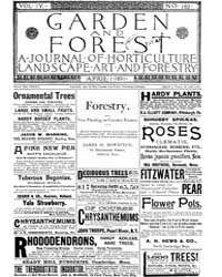 Garden and Forest Volume 4 Issue 162 Apr... by Charles S. Sargent
