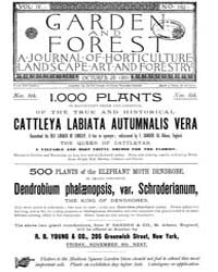 Garden and Forest Volume 4 Issue 192 Oct... by Charles S. Sargent