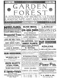 Garden and Forest Volume 4 Issue 194 Nov... by Charles S. Sargent