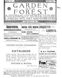 Garden and Forest Volume 5 Issue 209 Feb... by Charles S. Sargent