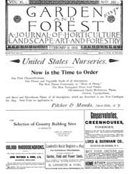 Garden and Forest Volume 6 Issue 260 Feb... by Charles S. Sargent