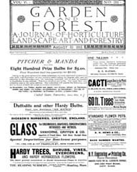 Garden and Forest Volume 6 Issue 288 Aug... by Charles S. Sargent