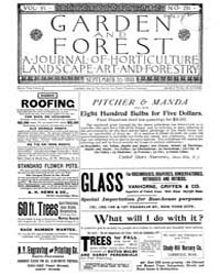 Garden and Forest Volume 6 Issue 291 Sep... by Charles S. Sargent