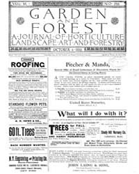 Garden and Forest Volume 6 Issue 293 Oct... by Charles S. Sargent