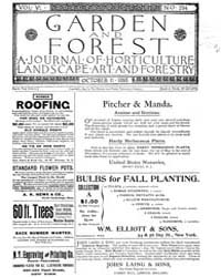 Garden and Forest Volume 6 Issue 294 Oct... by Charles S. Sargent