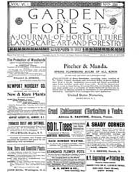 Garden and Forest Volume 6 Issue 299 Nov... by Charles S. Sargent