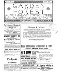 Garden and Forest Volume 6 Issue 300 Nov... by Charles S. Sargent