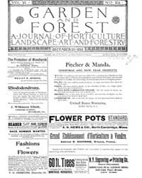 Garden and Forest Volume 6 Issue 304 Dec... by Charles S. Sargent