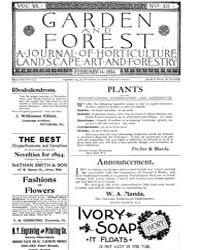 Garden and Forest Volume 7 Issue 312 Feb... by Charles S. Sargent
