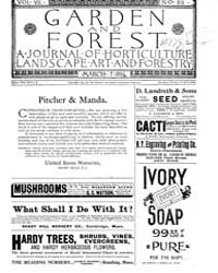 Garden and Forest Volume 7 Issue 315 Mar... by Charles S. Sargent